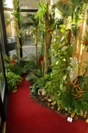 Floral display depicting a Rain Forest